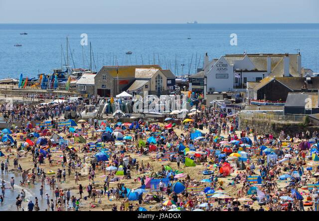 Lyme Regis, Dorset, UK.  1st June 2017.   UK Weather.   A packed beach full of sunbathers at the seaside resort - Stock-Bilder