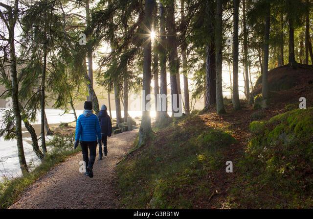 Sweden, Vastergotland, Lerum, Stamsjon, Mother and son (12-13) walking in forest - Stock Image