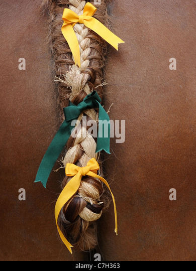 A plaited and braided tale of a Suffolk Punch horse, a traditional craft. - Stock Image