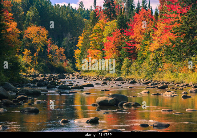 Autumn colors near Lake Placid in Adirondacks State Park in the northern part of New York State, USA - Stock Image