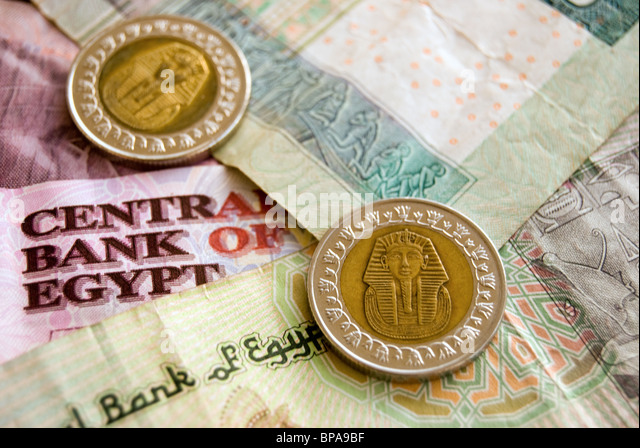 Egyptian Currency - Stock Image