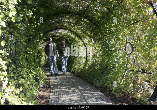 Alnwick England UK The Alnwick Garden The Poison Garden tunnel couple - Stock Image