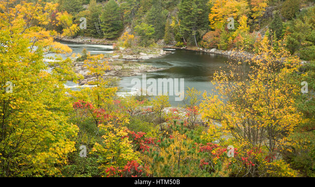 French River nr Recollect Falls, Ontario, Canada - Stock-Bilder