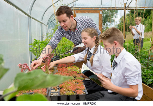 Teacher and middle school students learning gardening in plant greenhouse - Stock-Bilder