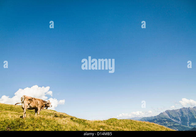 Aerial view of rural landscape - Stock Image