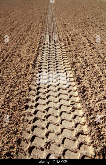 beach sand tires footprint perspective to infinite Caribbean cleaning tractor - Stock Image