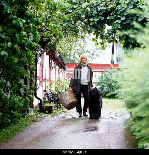A woman and a dig in a garden, Sweden. - Stock Image