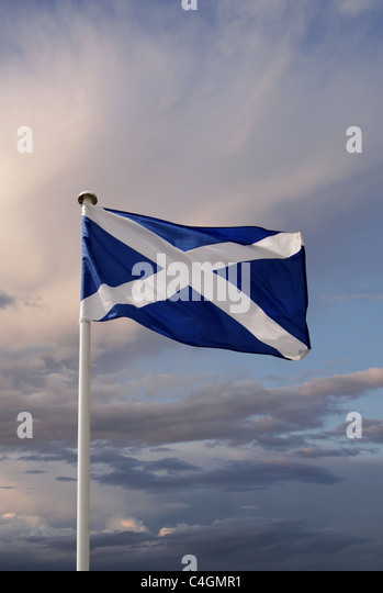 The Scottish flag - Stock-Bilder
