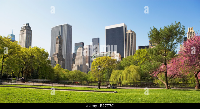 Buildings and trees, New York, United States - Stock Image