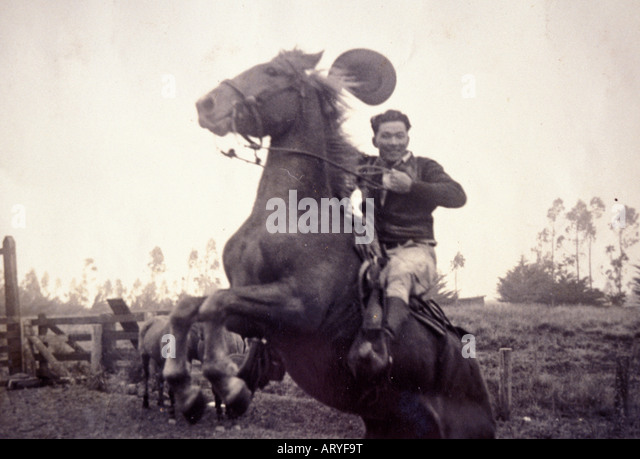 Archival black and white photograph of Yutaka Kimura, the ìWaimea Cowboy,î on bucking horse - Stock Image