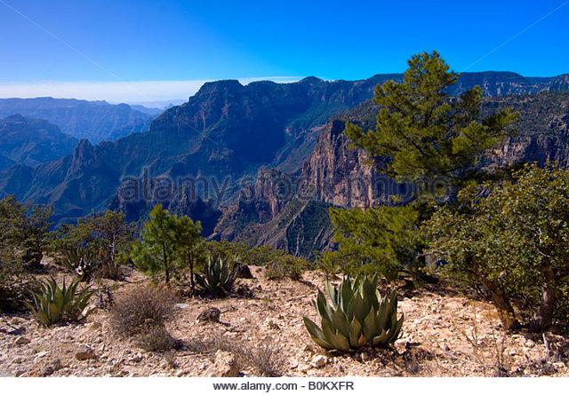 The Copper Canyon near the Uno Lodge near San Rafael Mexico - Stock Image