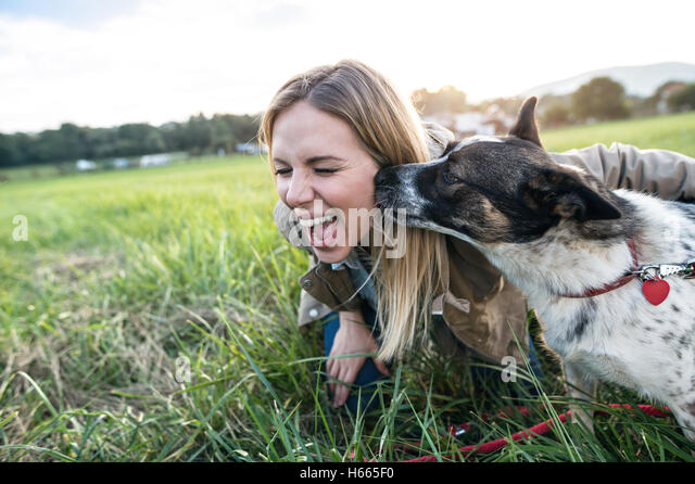 Beautiful young woman with dog in green sunny nature - Stock Image