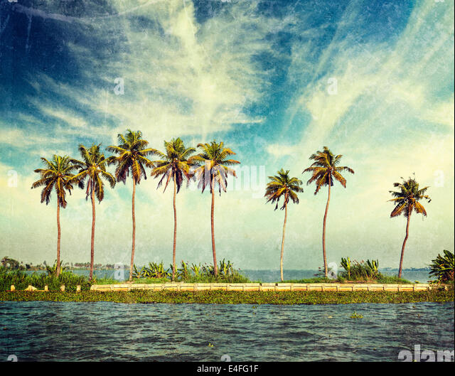 Vintage retro hipster style travel image of palms at Kerala backwaters with grunge texture overlaid. Kerala, India - Stock Image