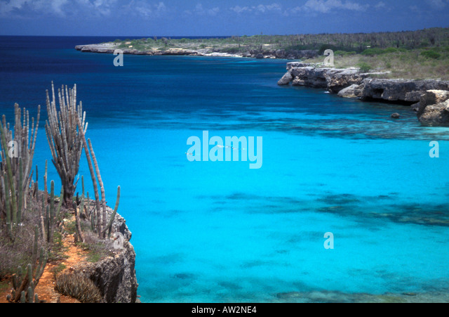 Bonaire Netherlands Antilles Cactus and rock shoreline snorkelers in blue water - Stock Image