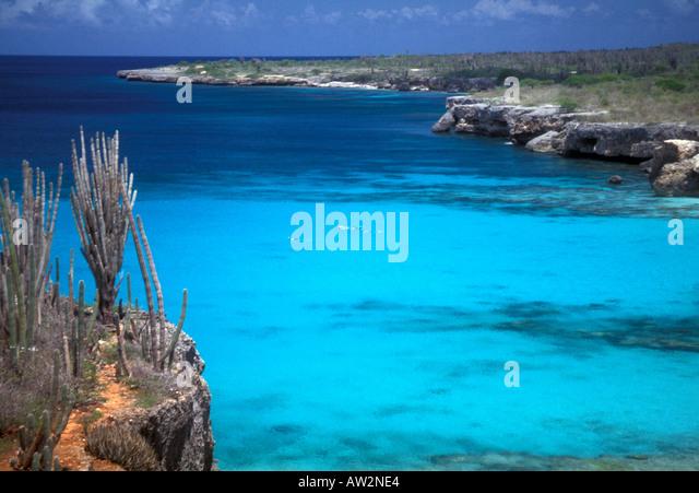 Bonaire Netherlands Antilles Cactus and rock shoreline snorkelers in blue water - Stock Image