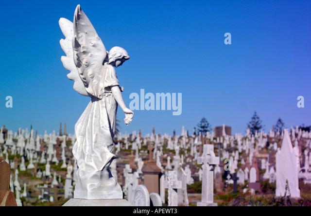 Graves in Sydney Waverley cemetery, a historic graveyard by the ocean; Sydney, Australia - Stock Image