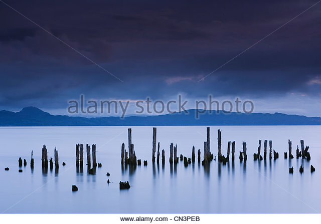 Pilings, Astoria, Columbia River, Oregon - Stock Image