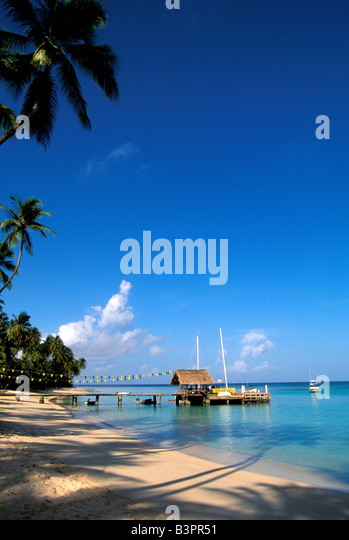 Tobago Pigeon Point heritage park thatch-roofed jetty boat dock iconic island symbol - Stock Image