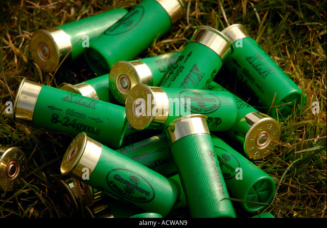 23 3 2006 Cirencester UK Gun cartridges Photo Simon Grosset - Stock Image