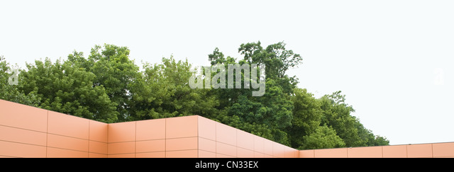 Building roof with trees - Stock Image