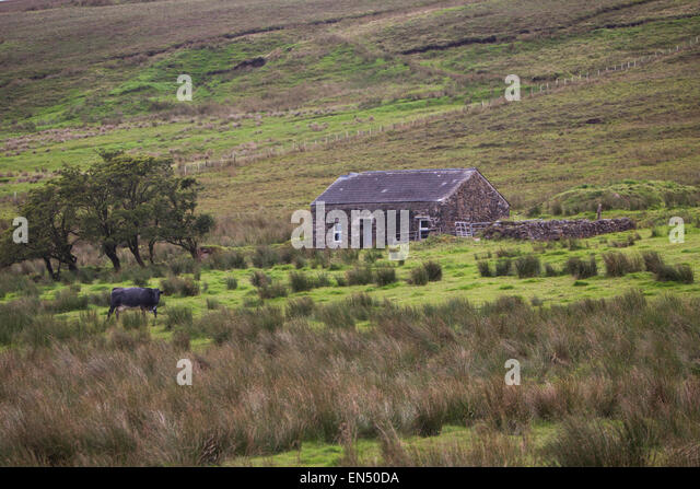 Island View House B B Roundstone Ireland