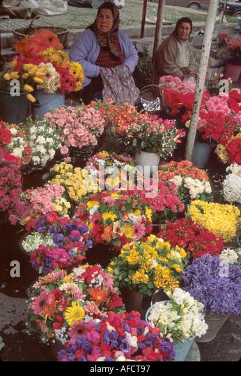 Turkey Istanbul Taksim Square gypsy flower vendors - Stock Image
