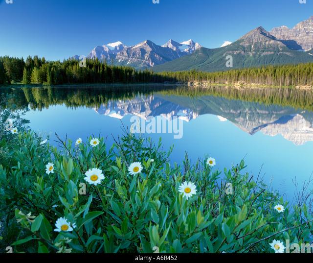 Herbert Lake Banff National Pak Canadian Rockies Canada - Stock-Bilder