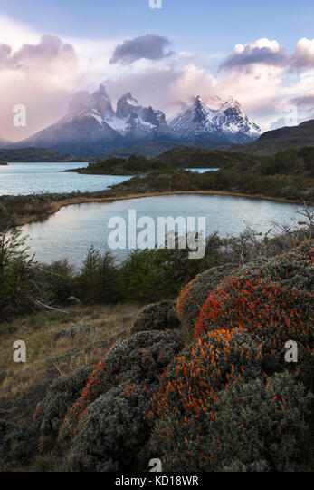 The landscape of Torres del paine National Park - Stock Image
