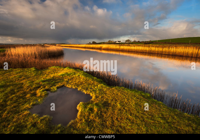 Sky reflected in still rural lake - Stock Image