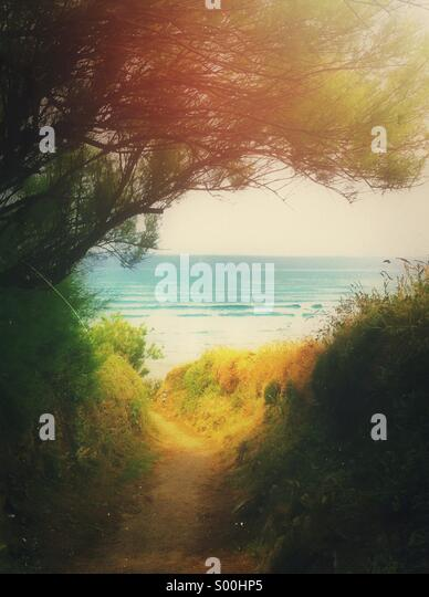 Pathway to the beach in Cornwall framed by trees and bushes - Stock Image