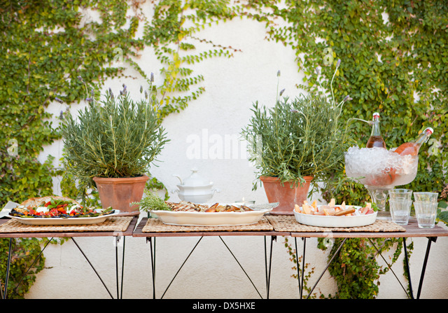 Garden buffet table with potted plants - Stock Image