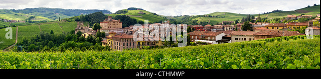 Barolo valley, vineyards, Panorama, Province Piedmont, Italy - Stock Image