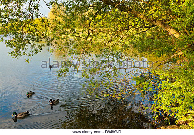 Overhanging Stock Photos Amp Overhanging Stock Images Alamy