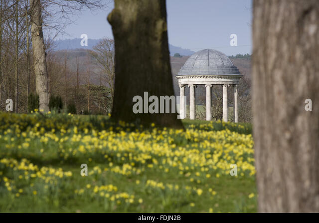 The rotunda built in 1766, and daffodils in the park at Petworth House, West Sussex. The Ionic rotunda may have - Stock-Bilder