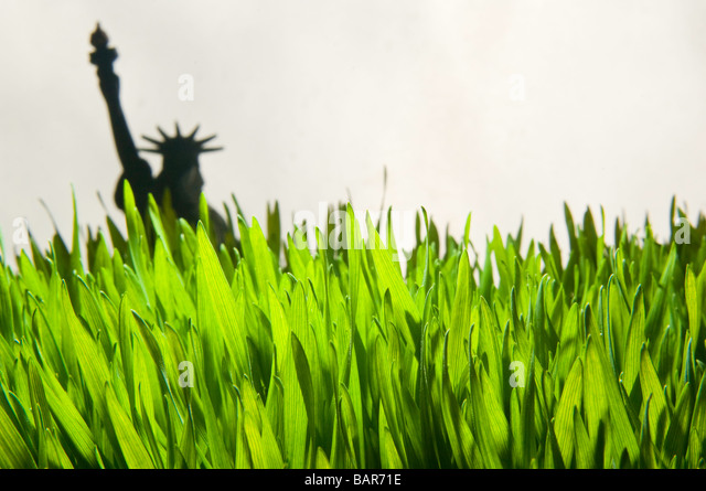 Wheat grass close-up with Statue of Liberty model. - Stock Image