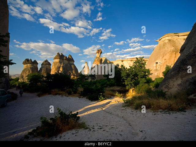 Vineyard Gorome Valley of Zelve Cappadocia Turkey - Stock Image