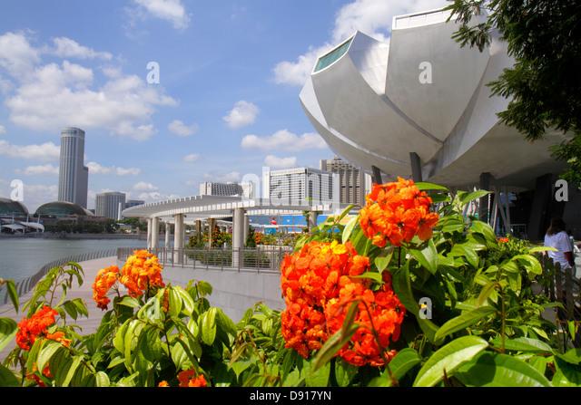Singapore ArtScience Museum architecture design outside exterior Marina Bay Singapore River Swissotel The Stamford - Stock Image