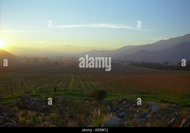 Altair stock photos altair stock images alamy for Bodegas de jardin chile