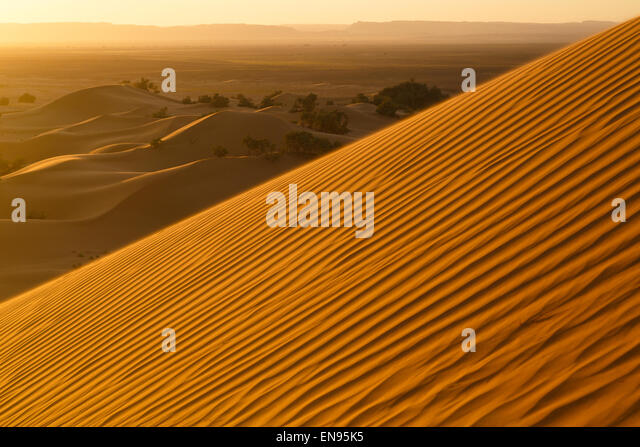 Sand dunes. Lihoudi dunes. Sahara desert. Morocco. - Stock-Bilder