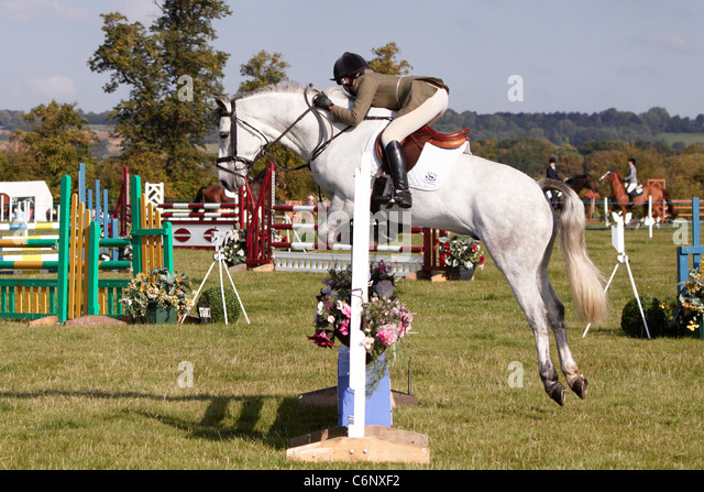 A competitor in the show jumping event at the Bucks County Show 2011 - Stock Image