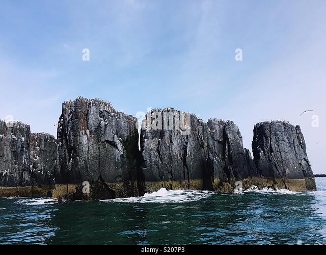 Sea and cliffs - Stock Image