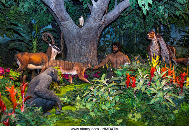 the creation of man in the garden of eden The garden of eden is not simply a small patch of ground near the headwaters of the euphrates: it is all of creation in microcosm it is cosmic in scale everything is present in the.