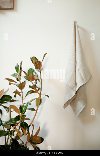 White towel hanging in bathroom next to plant - Stock Image