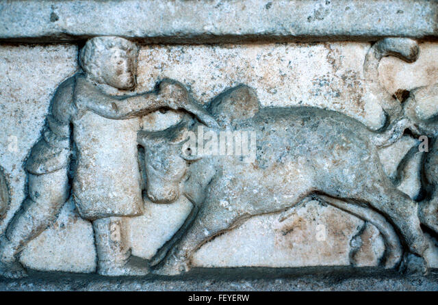 Bull fight ancient stock photos