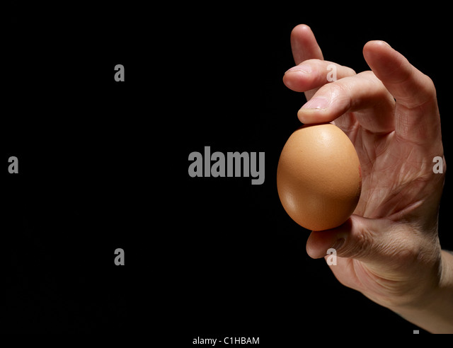An egg held in a hand - Stock Image