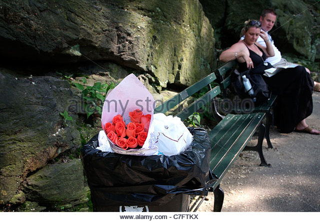 Discarded roses in a trash can in Central Park, New York, USA - Stock-Bilder