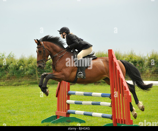 show jumping horse - Stock Image