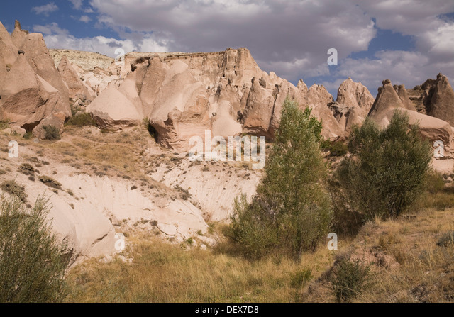piedestal dex ~ camel shaped stock photos & camel shaped stock images  alamy