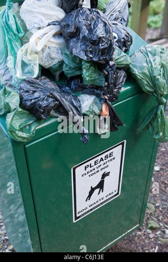 Overflowing Dog waste bin on footpath waste - Stock Image