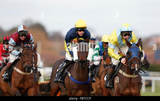 "Bassaraabad, Balderdash and  Reblis seen during the ""My Timeform' On The Timeform App Handicap Hurdle at Plumpton - Stock Image"